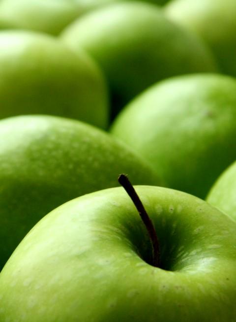 Fruta02-folleto
